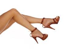 Pattes sexy et drôles dans des chaussures Photographie stock libre de droits