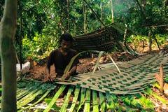 PATTHALUNG, THAILAND - 13 DEC, 2015: Negrito van Thailand Zij zijn een saa-gaistam die vreedzaam in dicht en impe leven Stock Fotografie