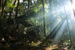 PATTHALUNG, THAILAND - 13. DEZEMBER 2015: Das Negrito von Thailand Sie sind ein saa-gai Stamm, die friedlich im dichten und im im Stockfotografie