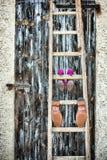 Pattini bianchi di cerimonia nuziale Fotografia Stock Libera da Diritti