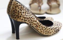 Pattini del leopardo Fotografia Stock Libera da Diritti