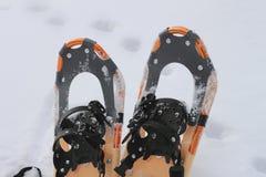 Pattini della neve Immagini Stock