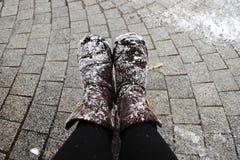 Pattini dello Snowy Fotografia Stock Libera da Diritti