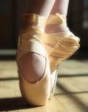 Pattini di balletto fotografia stock