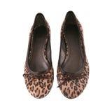 Pattini di balletto piani femminili con il reticolo del leopardo Immagini Stock Libere da Diritti