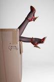 Pattini high-heeled delle calze di seta Fotografia Stock Libera da Diritti