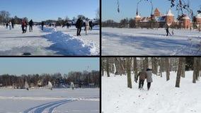 Pattino della gente su ghiaccio nell'inverno Surfisti del ghiaccio Coppie allegre stock footage