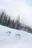 Pattino della montagna sui precedenti della neve Fotografie Stock