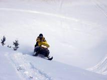 Pattino-Doo in neve immagini stock