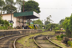 PATTIPOLA , SRI LANKA - 9 JANVIER 2014 : Touristes au train de attente de station de Pattipola photo stock