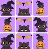 Pattrn με τις χαριτωμένες μαύρες γάτες αποκριών διανυσματική απεικόνιση
