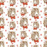 pattrn 02 de 022 leopardos Fotos de Stock Royalty Free