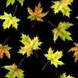Patttern sans couture avec des feuilles Photographie stock libre de droits