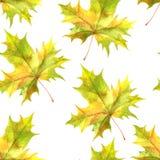 Patttern sans couture avec des feuilles Images libres de droits