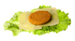 Patty, cheese, lettuce plant, isolated on white background Stock Photography