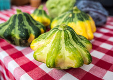Patty Pan squash Royalty Free Stock Photo