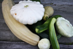 Patty pan squash and zucchini Stock Photography