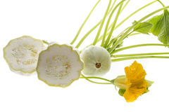 Pattypan, witte pompoen, Cucurbita-pepo Royalty-vrije Stock Afbeelding
