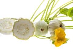 Pattypan, witte pompoen, Cucurbita-pepo Stock Afbeelding