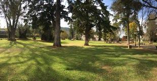 Patzcuaro Verborgen Park binnen de stad in royalty-vrije stock foto's