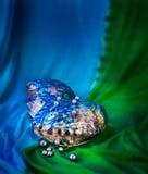 Paua壳和灰色珍珠装饰品 免版税库存图片