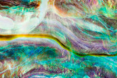 Paua或鲍鱼壳发光的珍珠层背景 图库摄影
