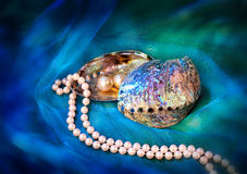 珍珠项链、耳环和Paua壳在蓝色布 库存图片