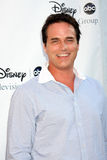 Paul Gross Royalty Free Stock Photography