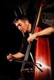 Paul Roges Trio on Jazz Koktebel Festival 2010 Royalty Free Stock Image