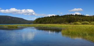 Paulina Lake in de Zomer Royalty-vrije Stock Foto