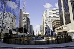 Paulista Aleja Fotografia Royalty Free