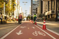 Paulista Avenue. bike path of paulista avenue. royalty free stock image