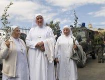 Paume dimanche de Jérusalem Images stock