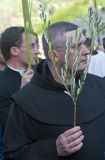 Paume dimanche de Jérusalem Photographie stock