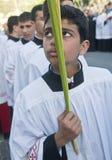 Paume dimanche de Jérusalem Image stock