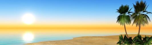 Paume et mer de plage de paysage marin Images stock