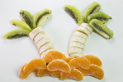 Paume faite avec des fruits Photos stock