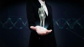 Paume ouverte de femme d'affaires, structure squelettique humaine femelle tournante, système d'os, lumière bleue de rayon X banque de vidéos