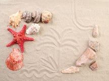Paume sur des coquilles de sable et le début de mer. Photo stock