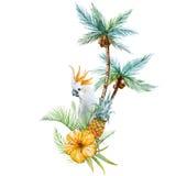 Paume tropicale d'aquarelle illustration libre de droits