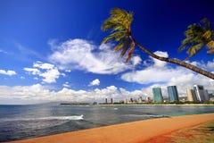 Paumes au-dessus de plage de ville Image stock