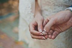 Paumes avec les anneaux de mariage 2374 Photo libre de droits