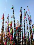 Paumes colorées - tradition biblique de Pâques Images stock