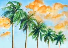 Paumes contre le ciel illustration libre de droits