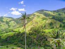 Paumes dans la vallée de Cocora de la vue aérienne de Salento images stock