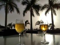 Paumes et bière Photos libres de droits