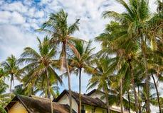 Paumes et pavillons sur Phuket Image libre de droits