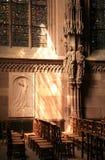 Paus John Paul II - Kathedraal in Strasboourg Royalty-vrije Stock Fotografie