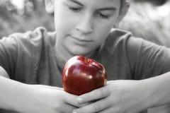 Pausa de Apple Imagen de archivo libre de regalías