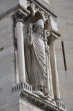 Pausbeeldhouwwerk op de muur van Notre Dame - Parijs, Frankrijk Stock Afbeelding